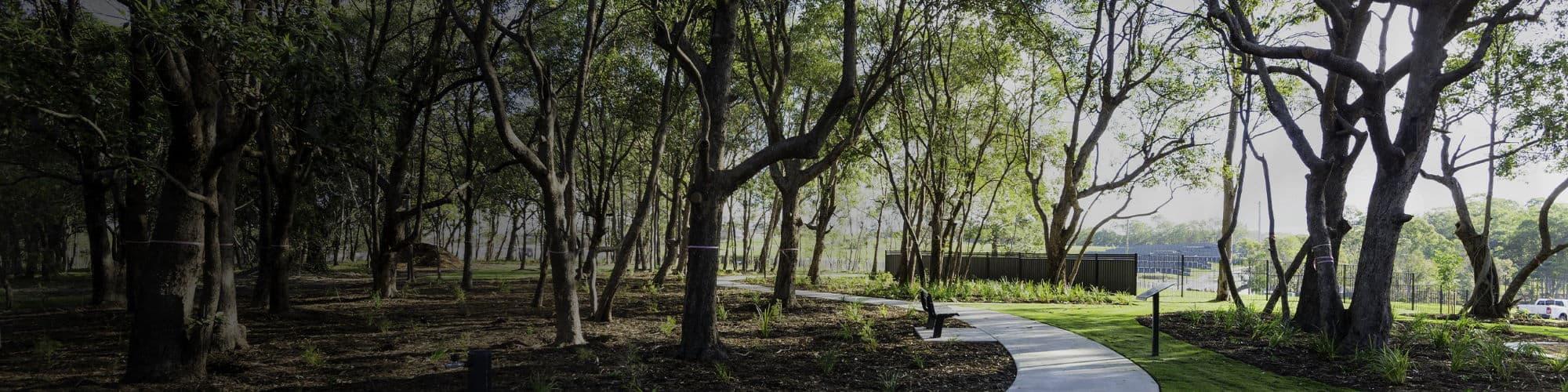 Treescience