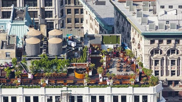 A rooftop garden on the top of a city building